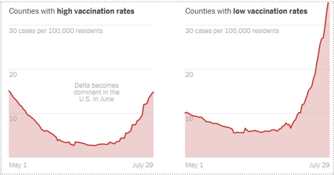 Vaccination rates