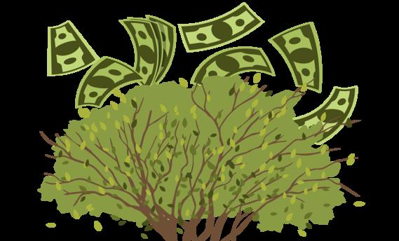 TW-tree-money