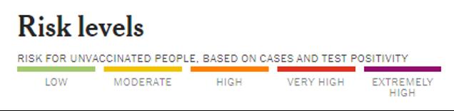 Risk Level Chart