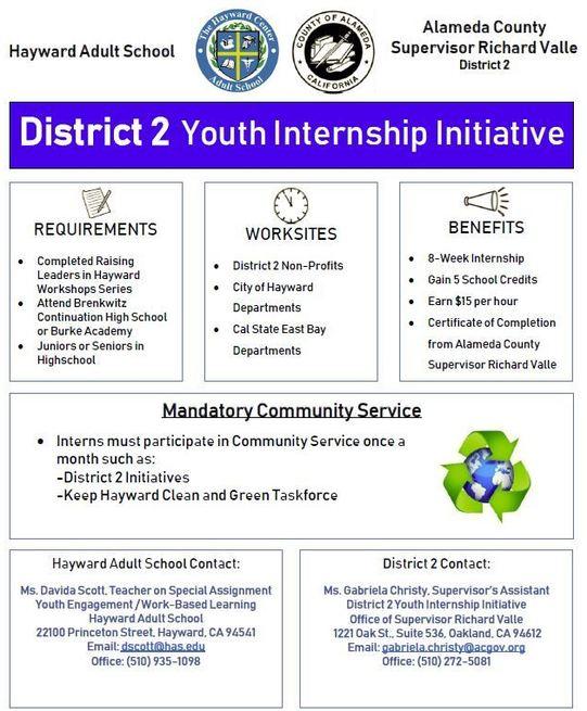 Youth Internship Initiative