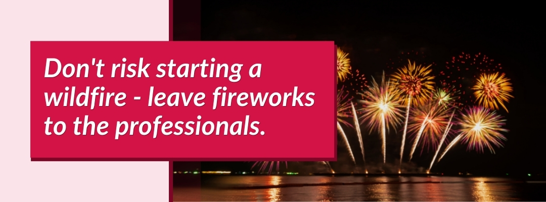 Leave fireworks to the professionals