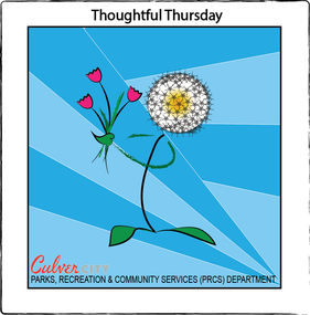 Thoughtful Thursday Flowers Parks, Recreation and Community Services Department