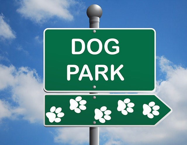 Dog Park Sign with Paw Prints