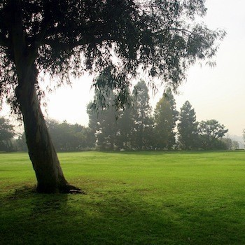 Image of a Culver City park. Click here to learn about outdoor park space rental.