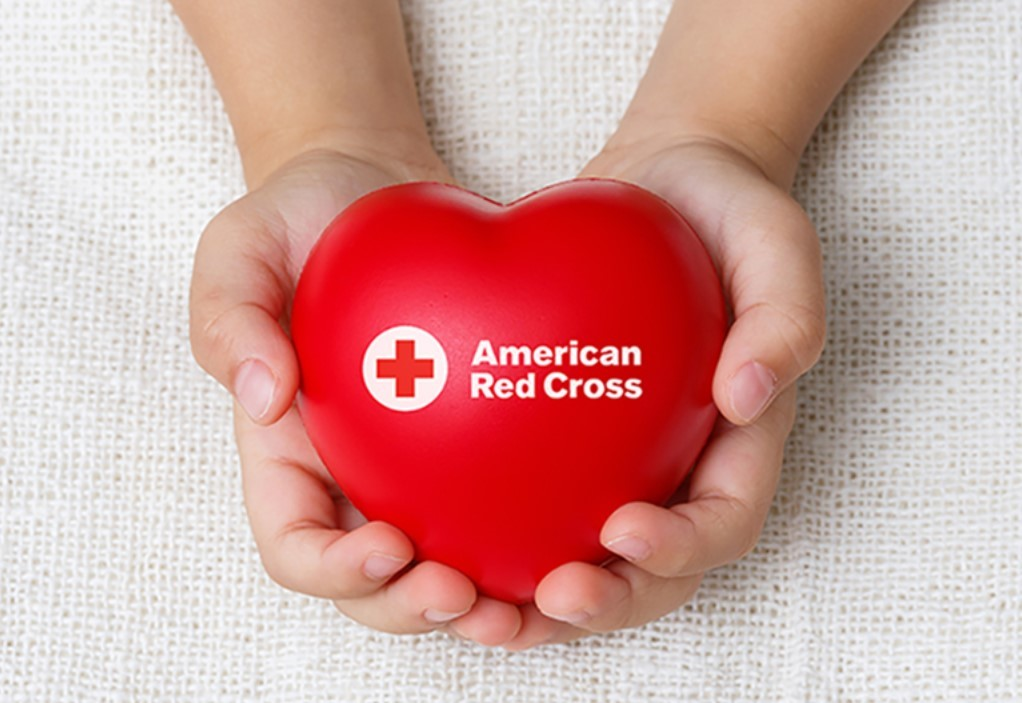 Small hands holding red heart - American Red Cross