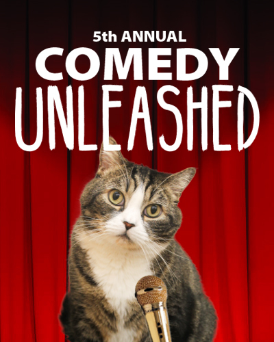 Comedy Unleashed