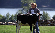 Starbucks, Unilever, Dairy Farmers of America