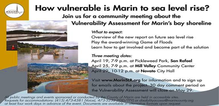 Marin's Bay Shoreline Vulnerability