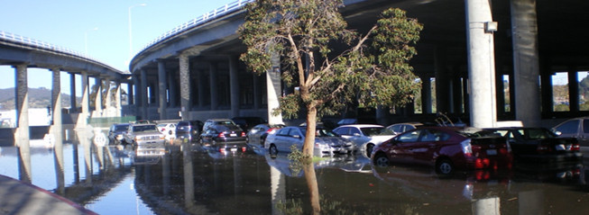 Cars sit in a parking lot full of water