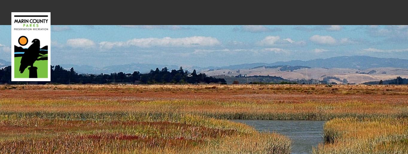McInnis Marsh Restoration