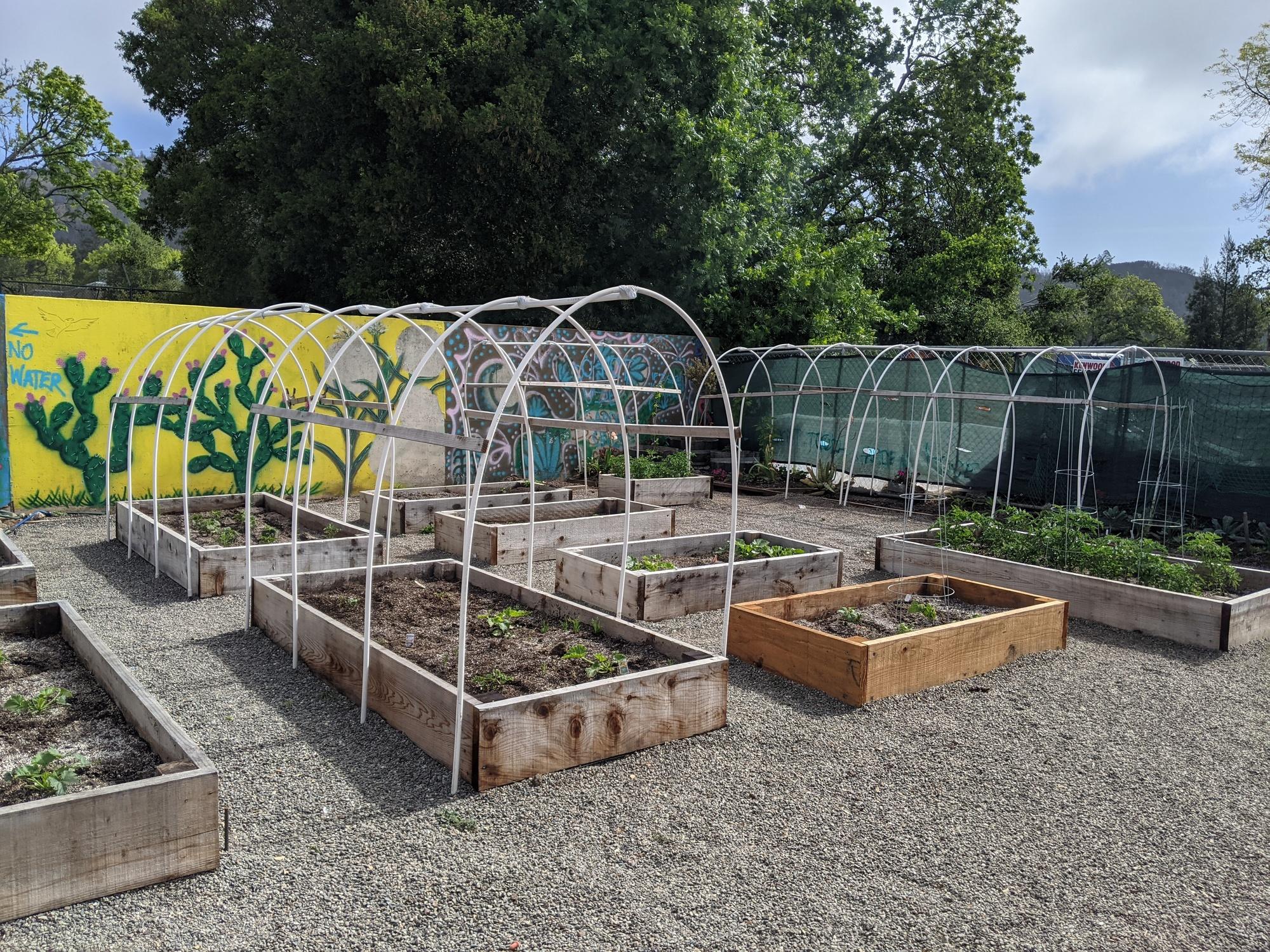 Sonoma Shelter Village - Garden