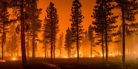 CA wildfire burning