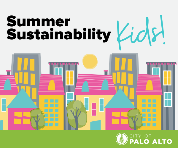 Summer Sustainability