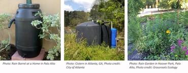 Rainwater Images