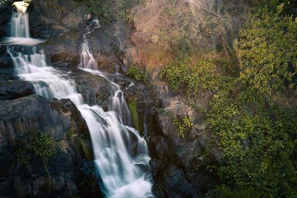 Photo of the week. Hidden Falls Regional Park.