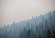 Air quality advisory image.