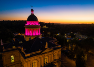 Pink courthouse