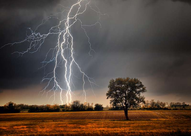 Photo of lighting striking a field.