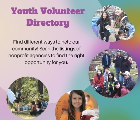 Youth Volunteer Directory Ad