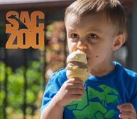 Sacramento Zoo Ice Cream Safari