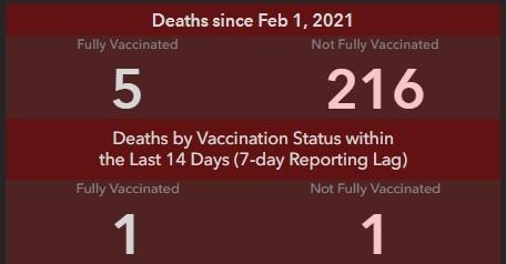 vaccine dashboard feature 2
