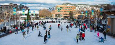 Stuart Park winter