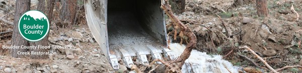Creek Restoration