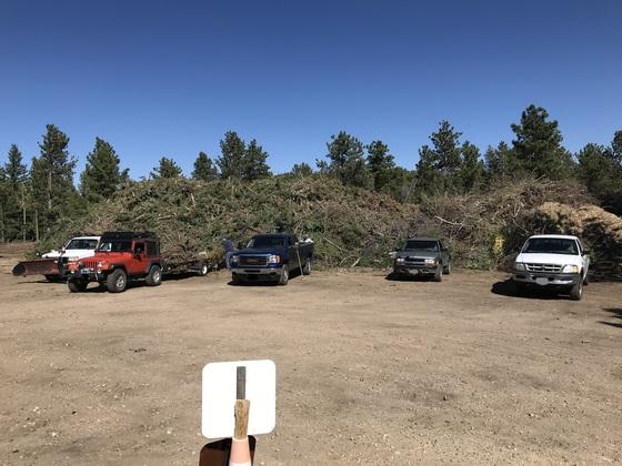 Cars at sort yard