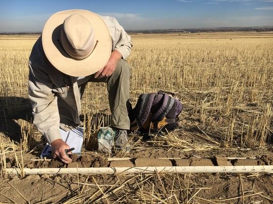Man kneeling, soil sampling