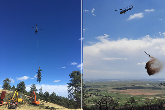 Helicopter forestry projects
