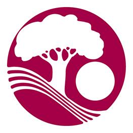Town logo 208 circle