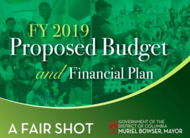 Fair Shot Budget