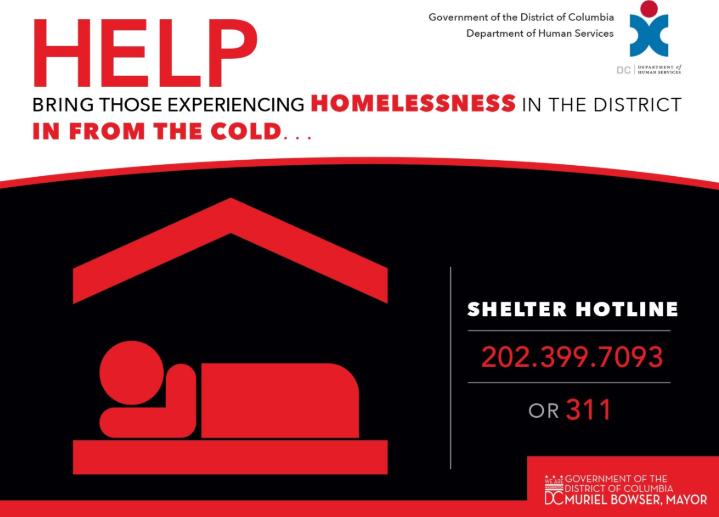Shelter Hotline