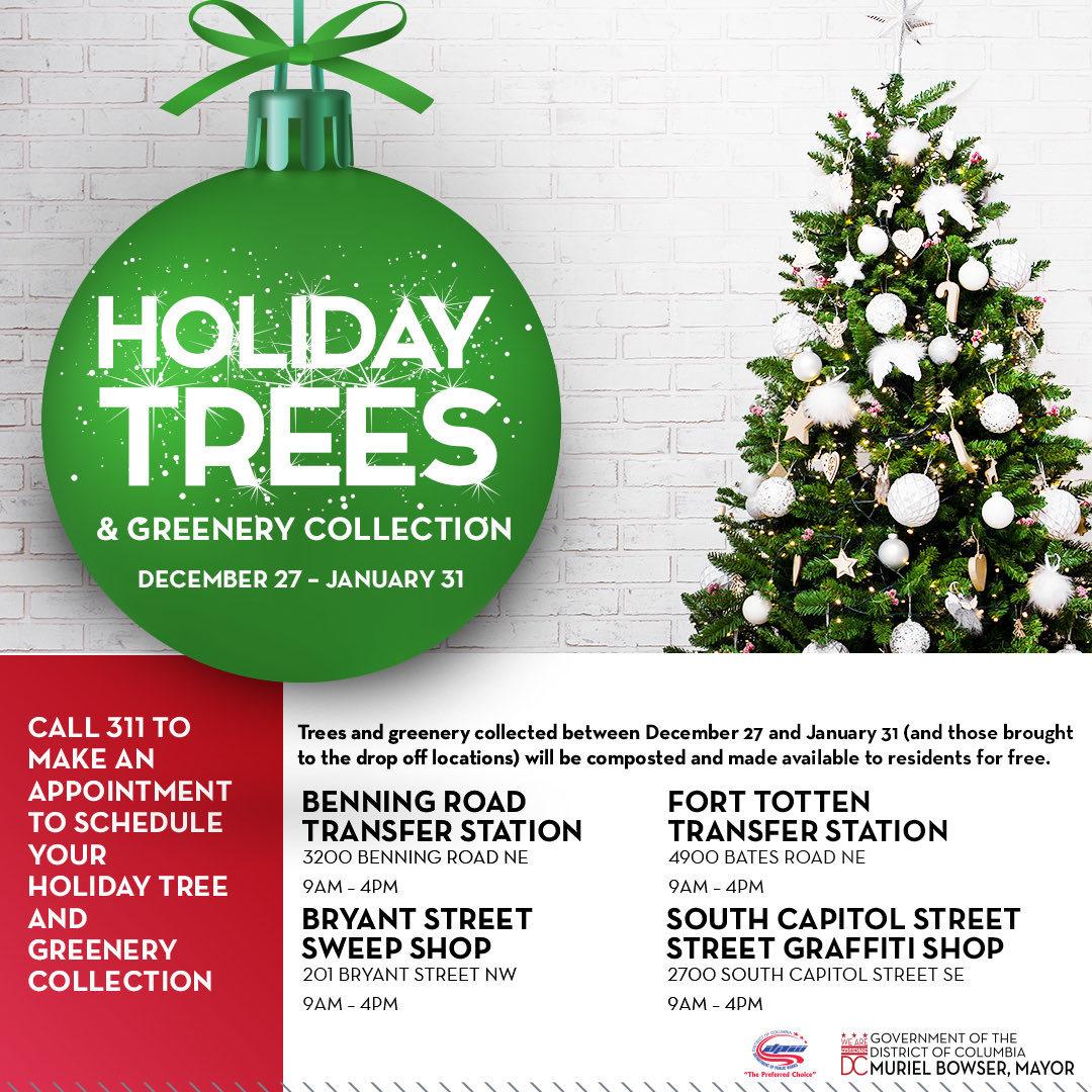 311 holiday trees