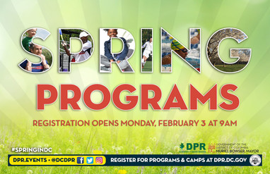 Spring Programming