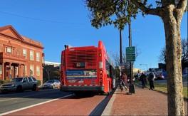 Bus Lane Image