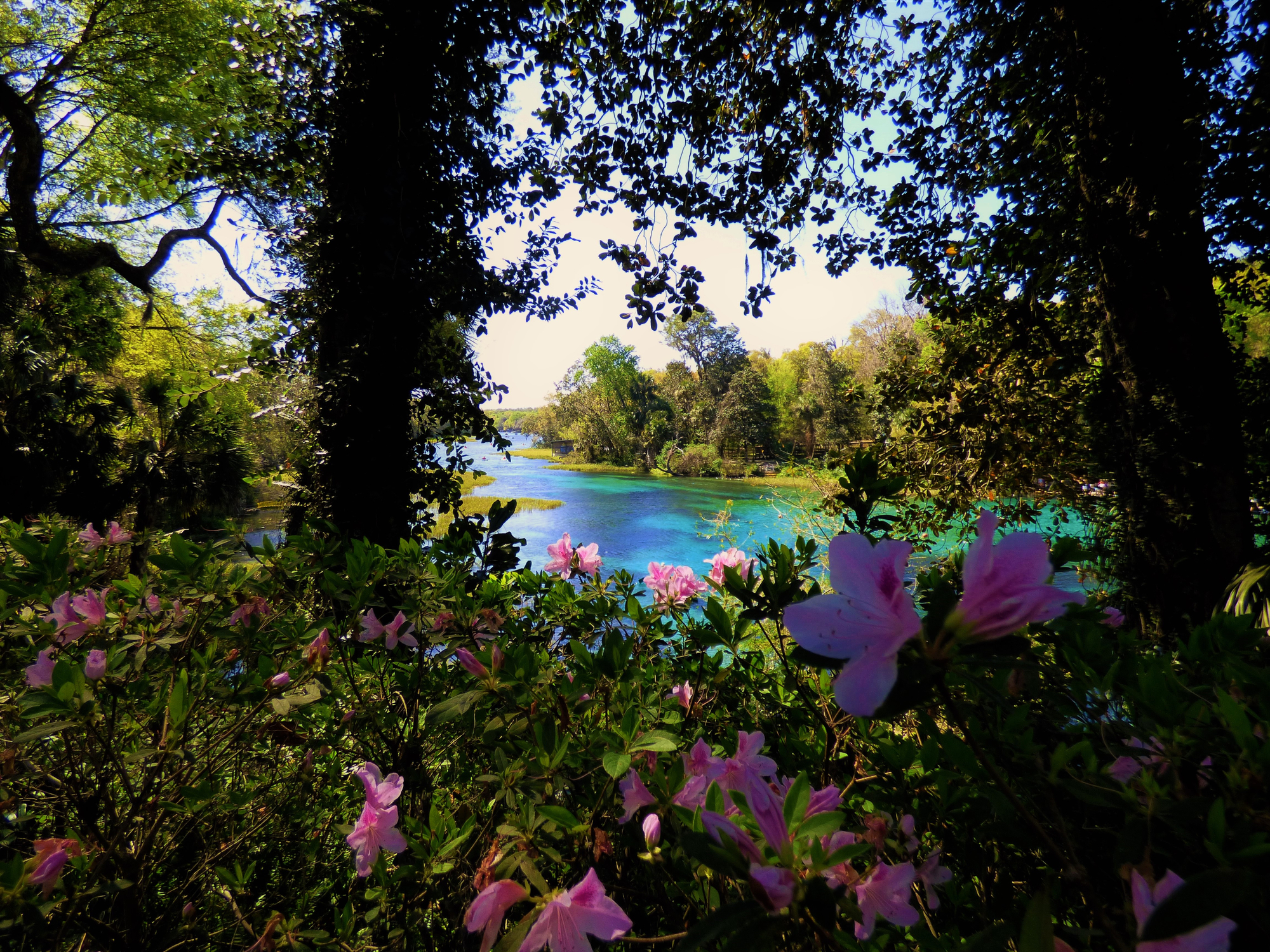 Spring time at Florida State Parks