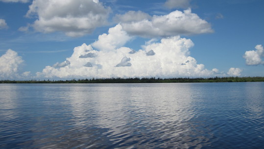 charlotte harbor aquatic preserve