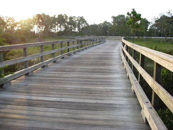 East Coast Greenway in Palm Beach by East Coast Greenway Alliance
