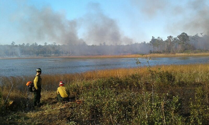Several Park Staff Members assist in a prescribed burn