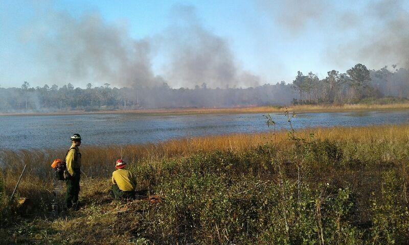 Several Park Staff Members assist in a prescribed burn