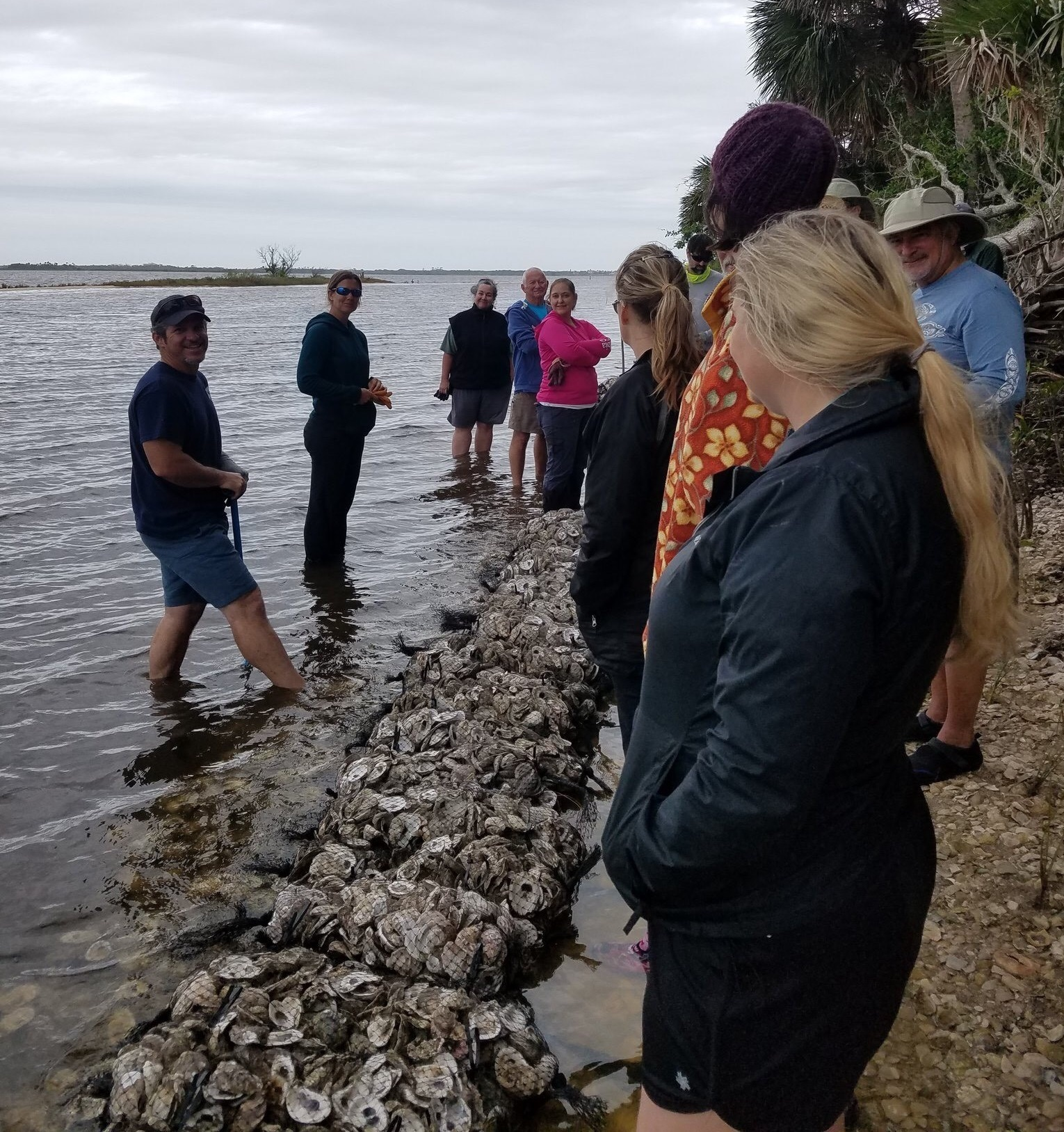 A group of UCF Students learn about coastal restoration