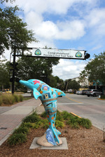 dolphin and trail town banner in downtown Dunedin by Doug Alderson