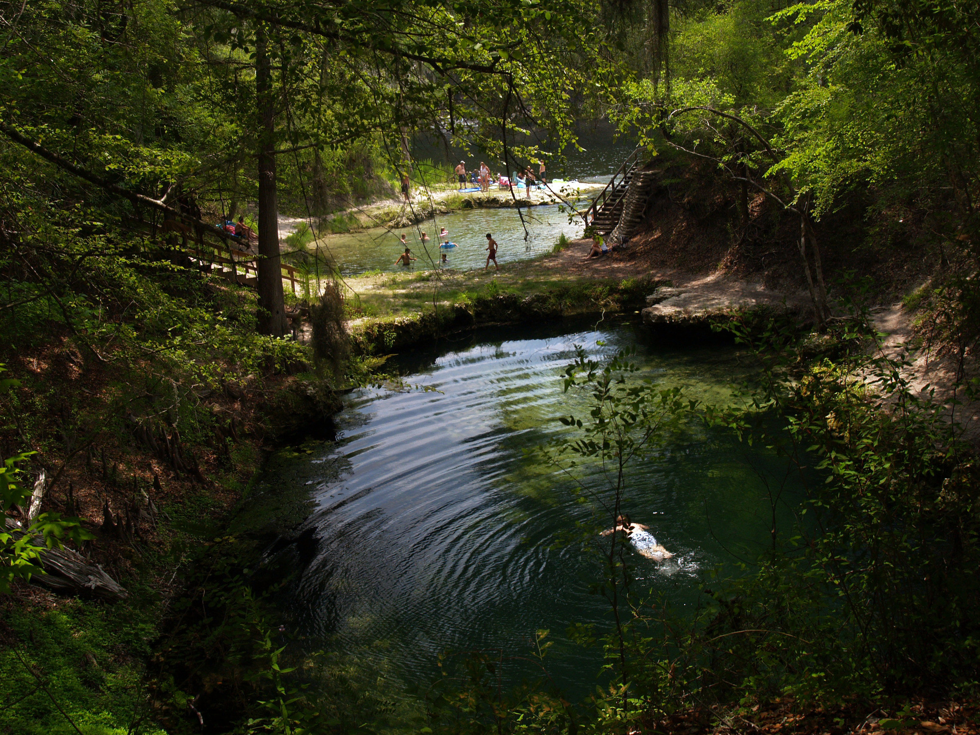 A picture of Lafayette Blue Springs State Park with clear water