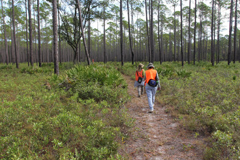 Florida National Scenic Trail hikers by Doug Alderson