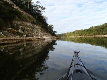 paddling the Apalachicola River by Doug Alderson
