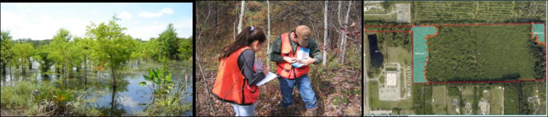 Wetlands regulation workshop