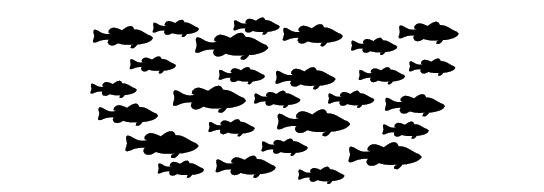 Population of bass