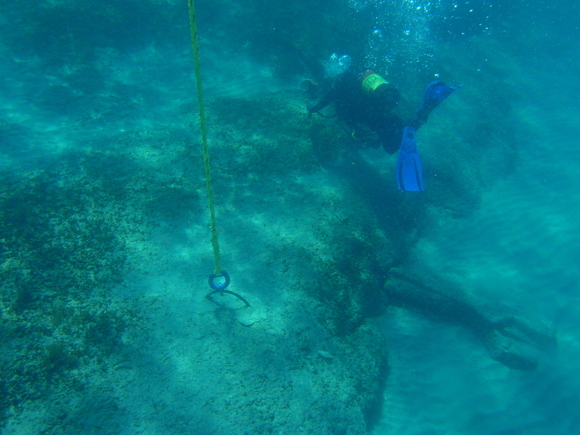 Picture: newly installed mooring buoy at Breakers Reef, underwater view