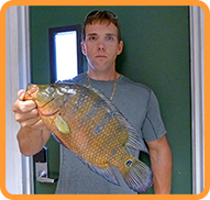 Mayan cichlid State Record